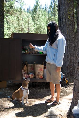 Lake Basin Camping-5