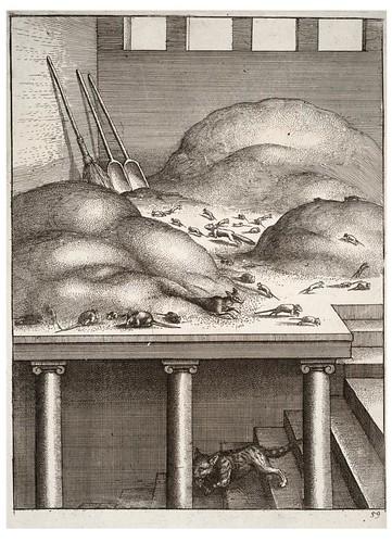 13 - La vieja comadreja y los ratones
