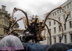 La Machine in a water ballet on Derby Square (new folder) Tags: rain liverpool umbrella spider arachnid crowd publicart artichoke downpour streettheatre waterballet royaldeluxe capitalofculture derbysquare watercannon liverpool08 franoisdelarozire lamachine laprincesse