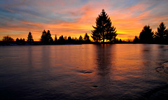 Winter On The Course (David Delisio Photography) Tags: winter sunset sky ice nature water backlight club golf landscape nikon golfcourse rollinghills d90 nikond90club