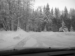 Road Trip Christmas 2008 (Marysville, Washington, United States) Photo