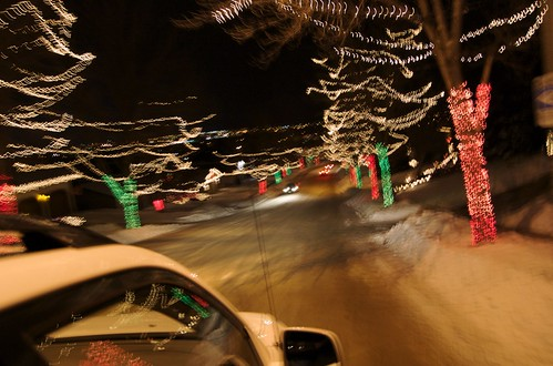 Christmas Tree Lane lights