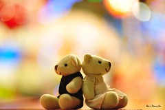 Just You And Me In This Colourful World (Weihao87) Tags: bear color colour cute love me loving hearts 50mm interesting nikon couple colorful you sweet bokeh f14 bears adorable colourful lovely supershot i bej anawesomeshot d700 goldstaraward