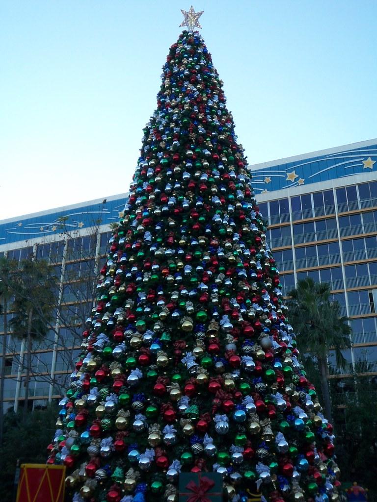 Disneyland Hotel Outdoor Tree