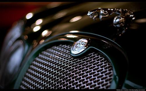 Jaguar-S-Type-R-Grille-Wallpaper-1650