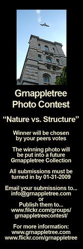 photo-contest-flyer-21