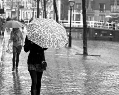 Umbrella's (bartwe) Tags: street people bw girl rain umbrella walking alkmaar regen paraplu  canonef50mmf14usm  explored mient