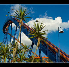 Busch Gardens - Scorpion Rollercoaster ('SandFlash) Tags: africa park trip blue trees red vacation sky holiday green nature water vertical speed tampa us tampabay florida loop air joy dive january drop east 09 rush experience rollercoaster gforce afraid splash heights scare 2009 themepark buschgardens thrill hur eastcoast riders twists adrenalin sheikra 70mph 90degree plunges goldstaraward verticaldive floridastallestrollercoaster