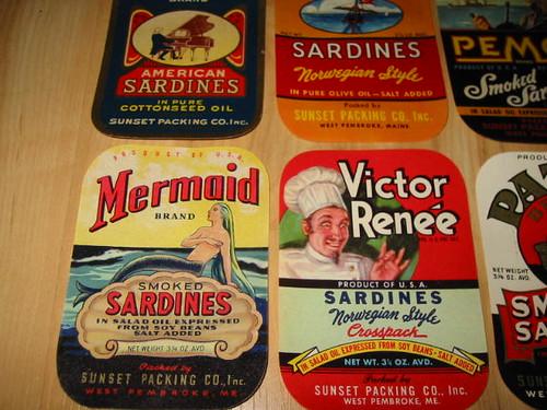 sardine102