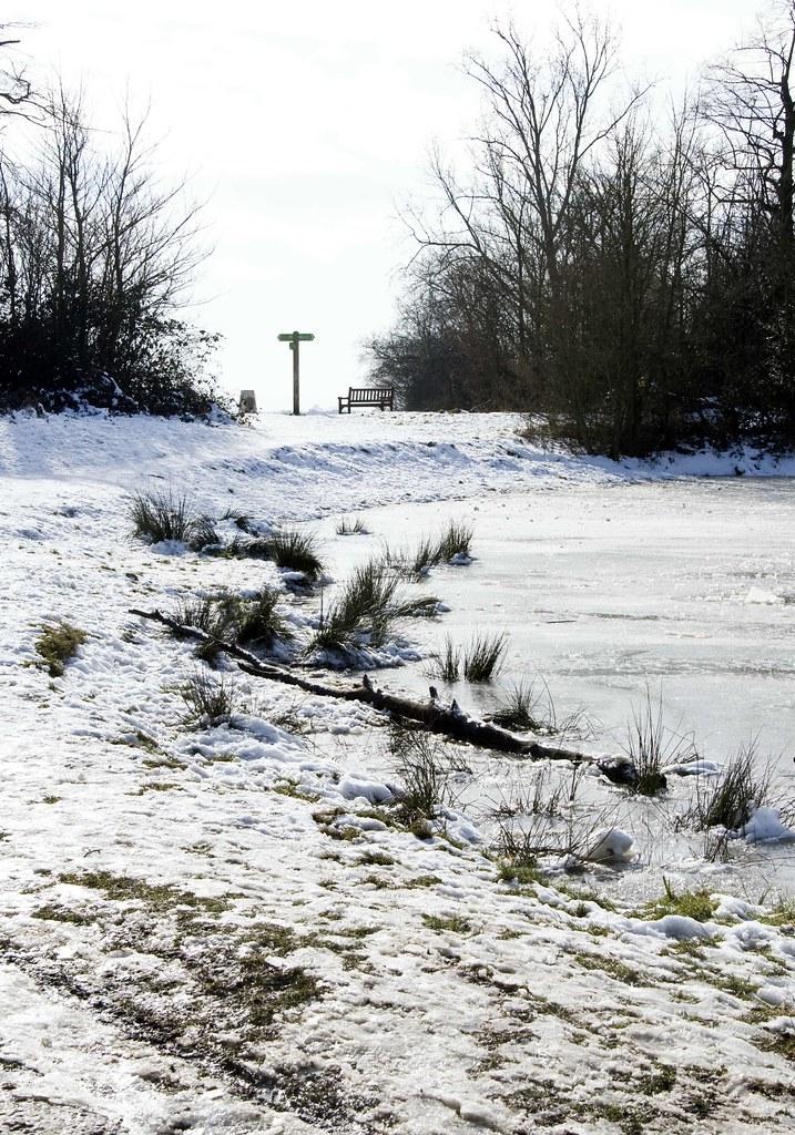 On frozen pond 2