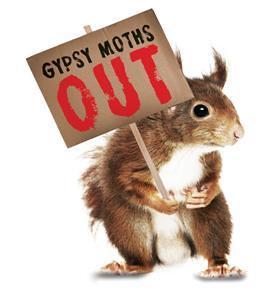 Gypsy moth campaign logo