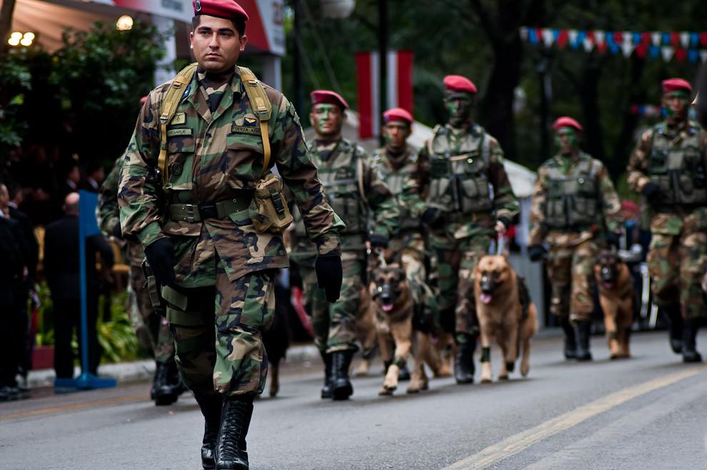 La Compañía Canina de la Fuerza Aérea de la Nación formó parte del gran desfile, impresionando al público con sus disciplinados perros. (Elton Núñez - Asunción, Paraguay)