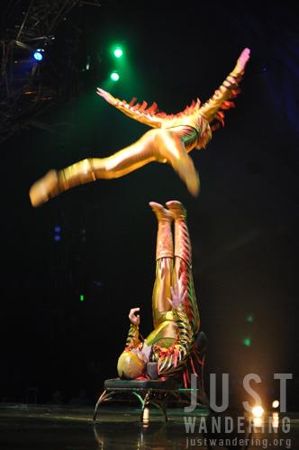 Varekai in Manila 08