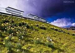 Here comes the hail again! (Sean Bolton (no longer active)) Tags: wales cymru nationalbotanicgardenofwales seanbolton anawesomeshot ffotocymrucouk wfc09032008nbg