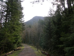 Another trail shot. (bikejr) Tags: ironhorse johnwayne cedarbutte