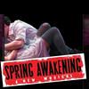 Sprink Awakening