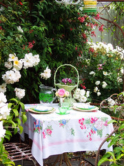 Sunday Lunch in the garden (OrangeCounty_Girl) Tags: life california flowers roses orange plants usa beach nature beautiful gardens america landscape photography photo petals spring others colorful flickr unitedstates tea photos kodak pics gardening may picture pic holly panasonic explore socal clark bloom tablecloth southerncalifornia orangecounty oc backyards westcoast bushes huntingtonbeach birdnest hb cityoforange englishgarden fountainvalley 714 surfcity sealbeach englishcountrygarden gardentour pansonic tableset panasoniclumix hometour frontyards flickrjunkie picturephoto orangecountygirl hollyclark 79714 spring2008 marylouheard lunchinthegarden marylouheardgardentour mlhmdgt clarkholly hollyclark714 hnc714