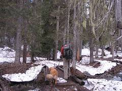 Jim and Gusto crossing DeRoux Creek