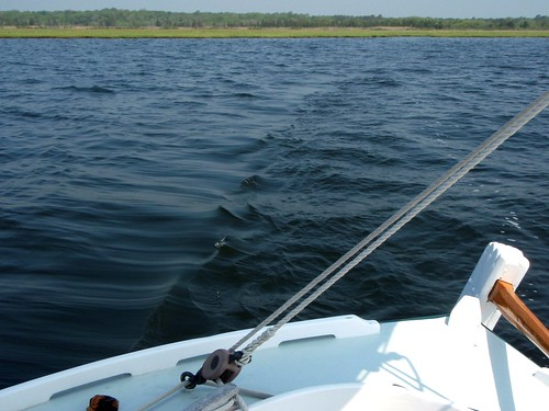 On Barnegat Bay
