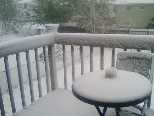 June Snow!