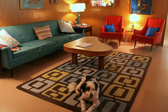 Livingroom (Crestview Doors, Austin TX) Tags: dog wool fifties retro rug tiki interiordesign boomerang angelaadams munjoy crestviewdoors roddyhouse
