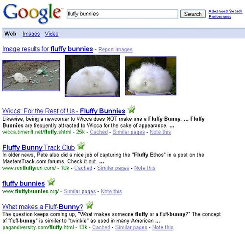 Google Search - fluffy bunnies