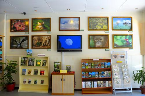 Cede's Gallery