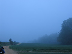"""Misty Morning • <a style=""""font-size:0.8em;"""" href=""""http://www.flickr.com/photos/48277923@N00/2621872851/"""" target=""""_blank"""">View on Flickr</a>"""