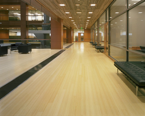 Solid Vertical-Grain Bamboo Flooring, Natural
