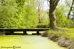 Mistakes (sirixception) Tags: park bridge colour green castle nature water groen belgium belgique song belgi natuur mistake brug soe kasteel belgien kleur goldenglobe thebigone evenement blueribbonwinner vlaamsbrabant geetbets bej passionphotography mywinners mywinner abigfave infinestyle ithinkthisisart diamondclassphotographer flickrdiamond ysplix brillianteyejewel exploreunexplored inspiredbywords creativewords kastelenenparkentocht bevents leenhofvanvlierbeek