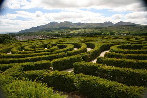 Maze One005 by Colm Flynn.