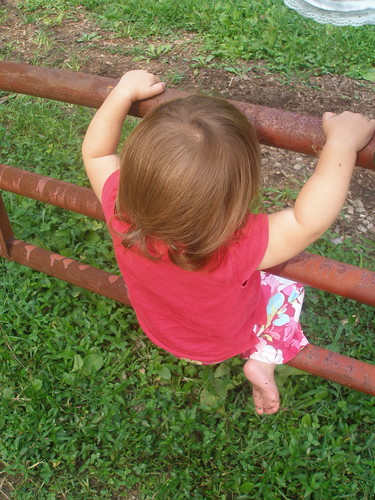 learning the art of climbing gates