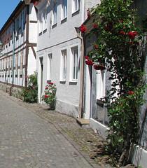 houses and roses (hildur_bjorg) Tags: houses roses white hus vita hs ystad rosor rsir hvt hildurbjrgvalgeirsdttir