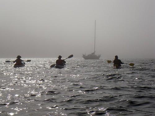 2008-08-10 Chatham Island 419