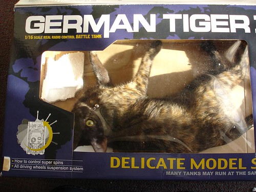 German Tiger 台灣特殊仕樣
