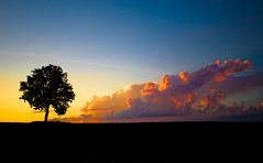 Witness (Loren Zemlicka) Tags: sunset sky orange usa tree silhouette wisconsin clouds rural canon landscape oak midwest horizon 5d wi f4 canonef1740mmf4lusm 38mm fitchburg canoneos5d flickrexplore danecounty aplusphoto