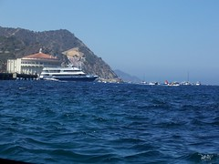 View from the glass bottom boat (iris1037) Tags: catalina santacatalina