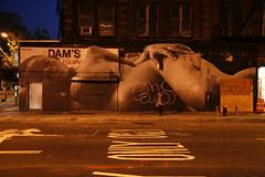TED 2011 Award Winner Artist/Vandal JR - NYC Street Art (jamie nyc) Tags: nyc newyorkcity streetart ski graffiti acc wheatpaste lowereastside jr vandalism gothamist houstonstreet vandalismo strassenkunst theoutsiders nymag allcitycrew strasenkunst wsawof photobyjimkiernan manhattanafrican 2011tedawardwinner publishedoctober20th2010innewyorkmagazine publishedoctober20th2010bygothamist