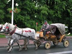 PICT0608 (jan.kocak) Tags: 2008 jun polsko krynicza