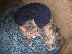 Gretel-cat