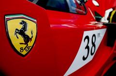Ferrari Shield on FXX Evoluzione (ngel lvarez) Tags: red 3 car yellow festival emblem nikon track texas village houston ferrari highland enzo only million shield 800 scuderia 38 dollars based horsepower d60 fxx evoluzione