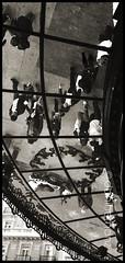(danihernanz) Tags: madrid street city people espaa reflections walking de calle europe cities mcdonalds reflejos acera plazadecallao nightpictures urbanpictures streetpictures madridpictures artisticpictures danihernanz callegranvia animalspictures moodpictures peopleinmadrid danielhernanzfotografodemadrid gentepaseandopormadrid animalsphoto mountainspictures fotosbonitasdemadrid picturesfotosdeciudadeseuropeas ambientpictures lasmejoresfotosdemadrid artisticanimalpictures allrightsreservedinallmypicturesdontusewithoutmypermission copyrightdanihernanz fotosartsticasdemadrid fotosdemadridenblancoynegro blackandwhiteurbanpictures amazingurbanpictures fotografodeanimalsdanihernanz amazinganimalpictures agressiveanimalpictures animaldetailpictures animalsfacetoface closeupanimalpictures thebestpicturesofanimals beautifullandscapespictures ambiancepictures pictureswithatmosphere