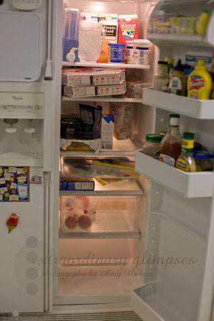 fridge_Jan032009_0001web
