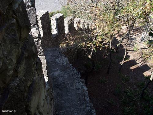 Acho que é preciso ser um bocado parvo para subir as muralhas, só para tirar uma foto... :D