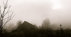 The Worst Of All Possibilities (Baab1) Tags: rot rain fog sunrise decay maryland oldbarns historicbuildings southernmaryland earlymornings dilapidatedbuildings farmbuildings countrysides oldstructures calvertcountymaryland photographyrocks proudshopper huntingtownmaryland marylandfarms marylandscenics