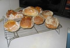 fresh rolls2