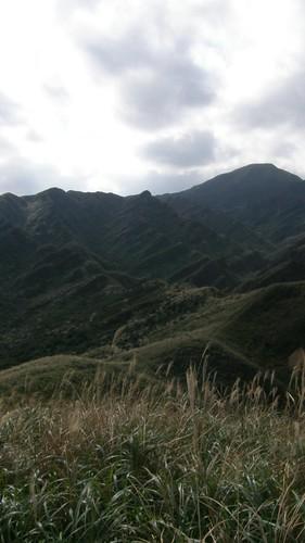 042.芒草與稜線