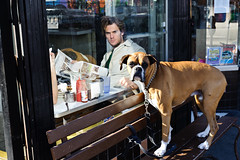 (Jack Simon) Tags: sanfrancisco dog window breakfast bench cafe candid angry boxer mission spotted visiblephotographer