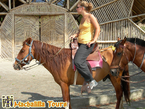 Montañita Horse Riding, Puerto Lopez, Rainforest Tours, Machalilla Tours Operator