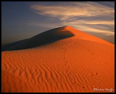 Ramlit Az Zellaf  ! (Bashar Shglila) Tags: sunset sky sahara sand desert dune libya lybia libia brack sead libyen  sabha  lbia sebha libi alshati libiya sahran liviya  libija       lbija  lby libja lbya liiba livi    azzallaf